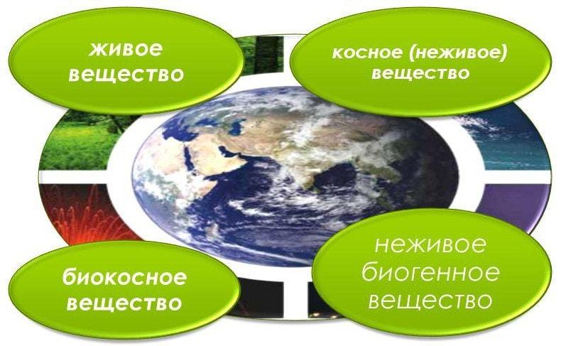 Структура и состав биосферы