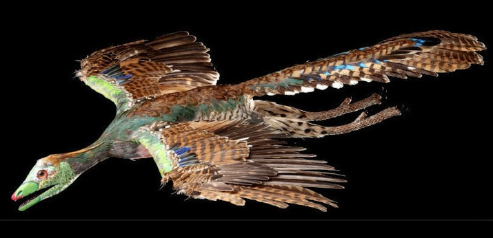 Археоптерикс - прародитель птиц