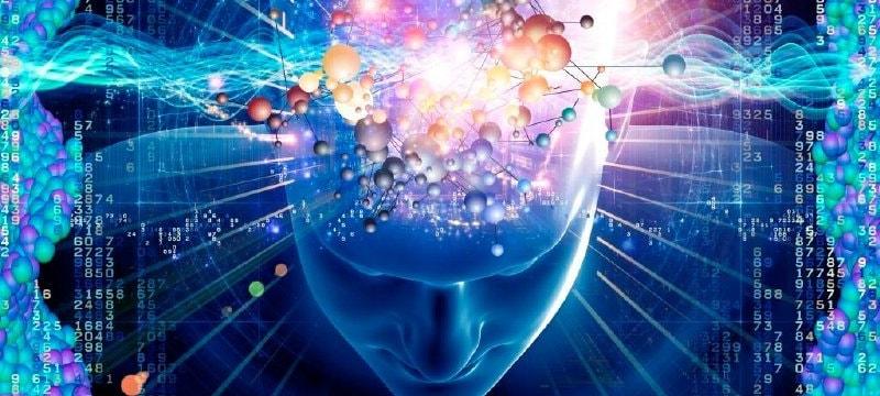 Сознание как высшая форма отражения действительности