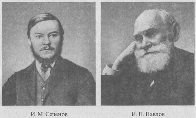 Вклад И. М. Сеченова и И. П. Павлова в создание учения о высшей нервной деятельности