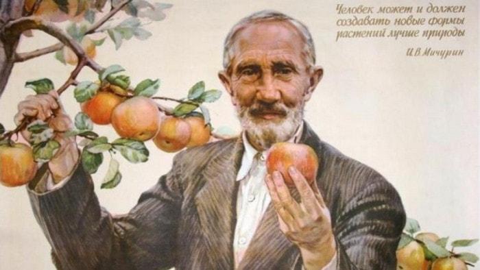 Методы работы И.В.Мичурина