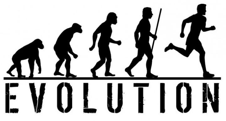 Результаты эволюции