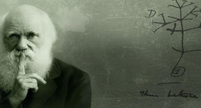 Значение теории Дарвина для развития естествознания