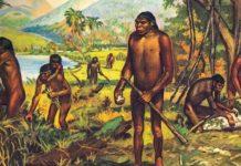 Роль труда в превращении обезьяны в человека
