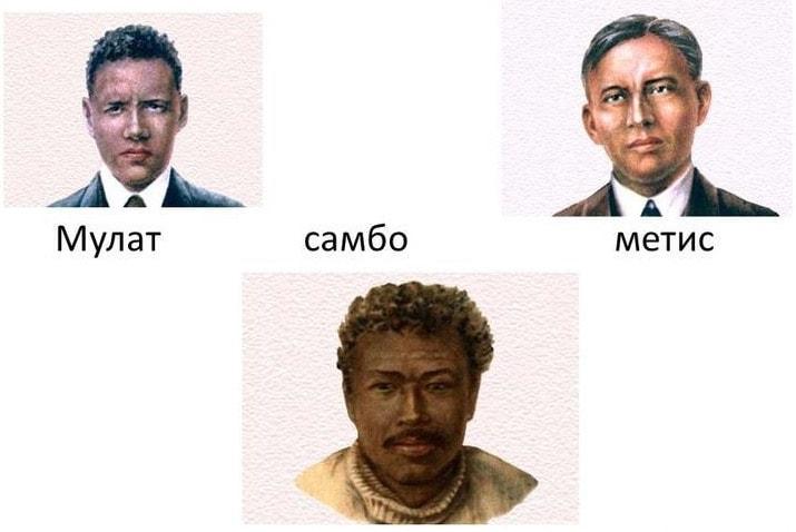 Смешанные расы