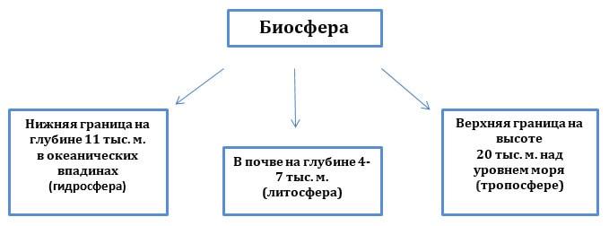 Схема границ биосферы