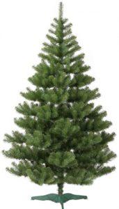 Ель - вечнозеленое дерево