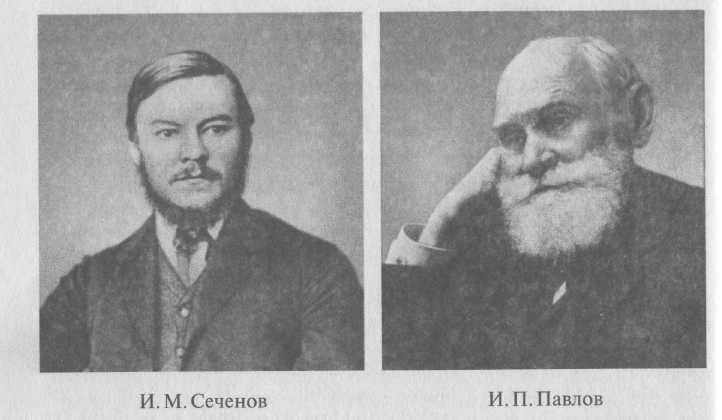 Роль И. М. Сеченова и И. П. Павлова в создании учения о высшей нервной деятельности