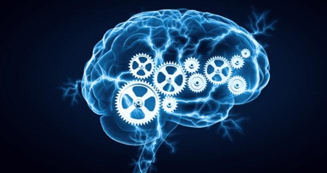 Механизм сознания человека